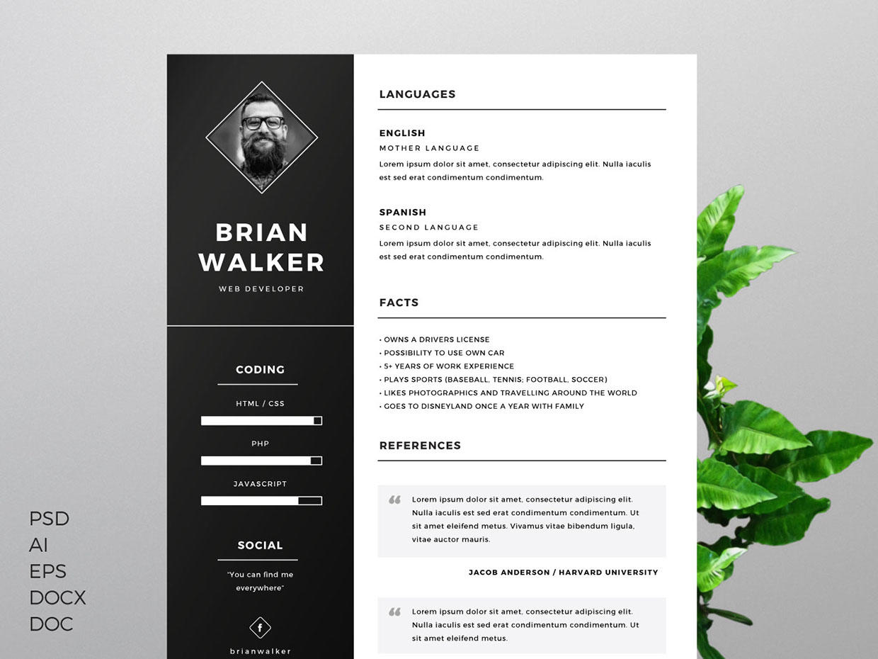 74 Inspirational Great Looking Resume Templates for Pics