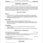75 Awesome Professional Resume Format with Graphics