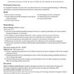 76 Awesome Job Resume Template with Design