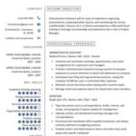77 Beautiful It Professional Resume Templates with Graphics