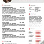 77 Excellent Elon Musk Resume with Graphics
