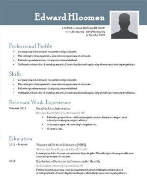 77 Great It Professional Resume Templates with Gallery