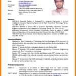 77 Top English Cv Template with Pictures