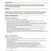 79 Stunning Software Experience Resume by Graphics