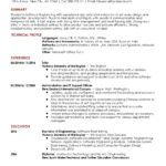 80 Nice Software Engineer Summary Resume by Graphics