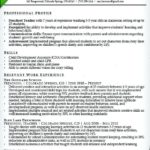 82 Excellent Early Childhood Education Resume Examples by Graphics