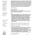 82 Lovely Experience Description Resume Examples with Design