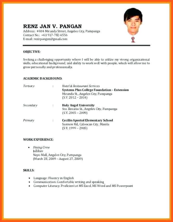86 Awesome Resume Format Examples for Images