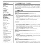 88 Beautiful Google Resume Templates 2018 Free with Ideas
