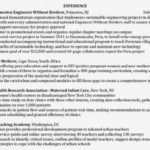 89 Excellent Dragon Resume Review for Graphics