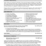 89 Fresh Professional Resume Format with Images