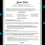 90 Lovely How Should My Resume Look with Design
