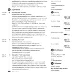 91 Best Teacher Resume Template by Gallery