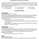 91 Cool How Should My Resume Look for Graphics