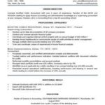 92 Cool Job Resume Template with Graphics