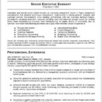 93 Top Best Executive Resume Templates 2018 with Design