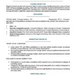 94 Fresh College Resume Examples by Ideas