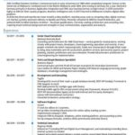 94 Inspirational Software Engineer Summary Resume by Pictures