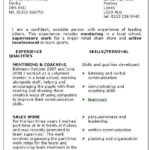 94 Lovely Examples Of Skills Based Resume with Gallery
