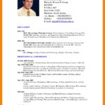 95 Best English Cv Template by Images