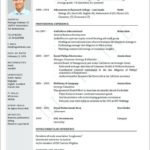 95 Cool The Perfect Resume for Gallery