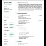 98 Top Online Resume Template by Gallery