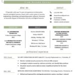 99 Nice It Professional Resume Templates with Ideas