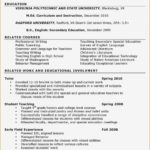 99 Top Early Childhood Education Resume Examples with Graphics