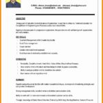 99 Top New Resume Format by Gallery